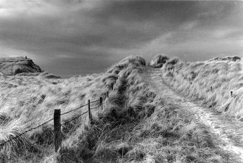 Caithness, beach path through sand dunes. Black and white print.
