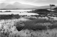 Blackmount. Bridge of Orchy. Lochan. Moody landscape. Black and white