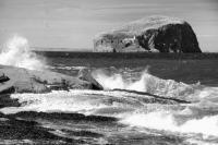 Bass Rock with lighthouse, seascape with breaking waves. Black and white
