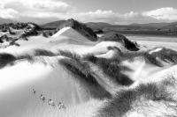 Durness Caithness. Sand dunes with footprints. Black and white