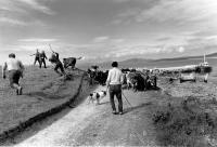 Barra beach, cattle herding, vintage, black and white