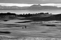 Gullane no1 golf course. 12th hole. Man and dog. Arthur's Seat. Black and white
