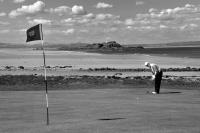 North Berwick West Golf Course. Golfer putting. Black and white